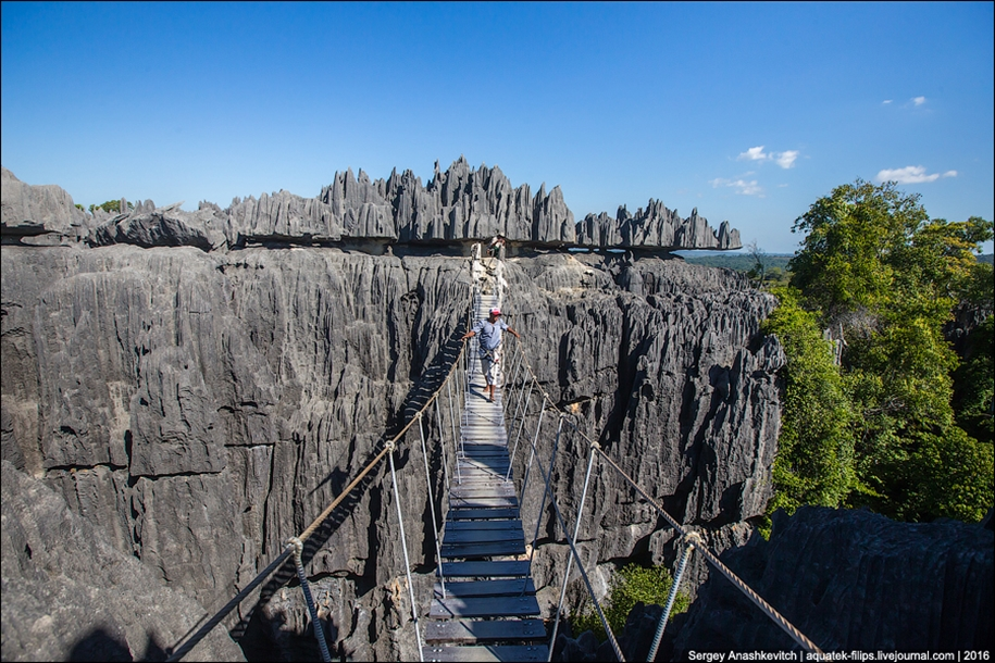 It's worth seeing with your own eyes! Stone forest of Tsingy 14