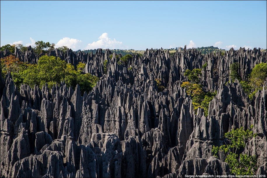 It's worth seeing with your own eyes! Stone forest of Tsingy 22