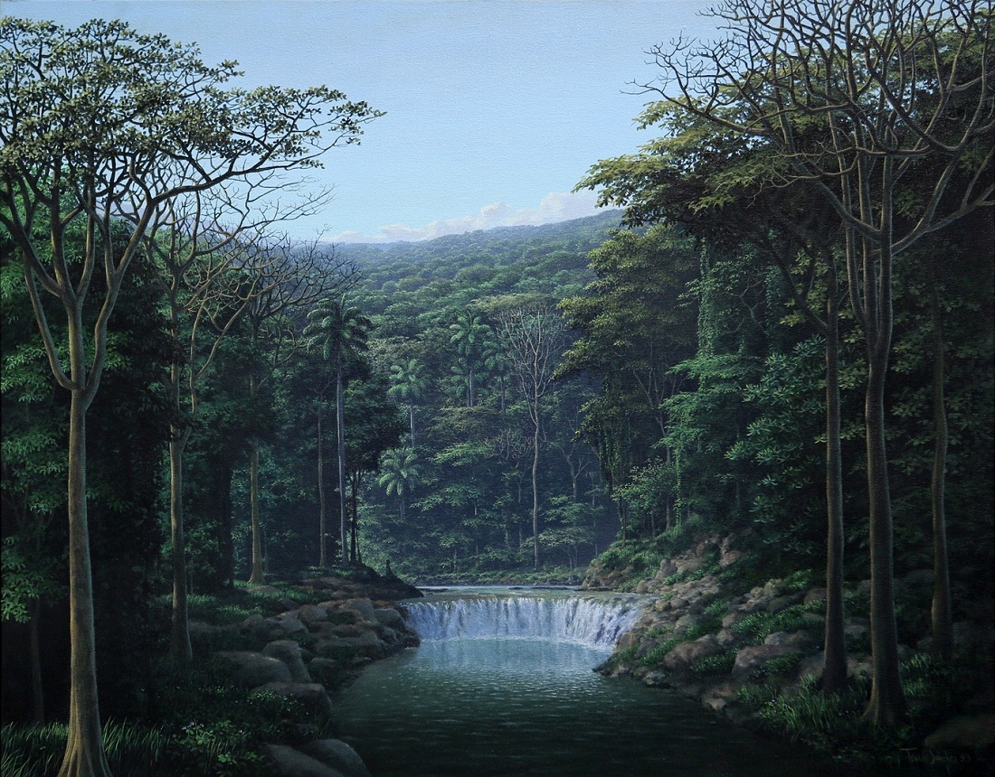 Jungles and waterfalls. the best work of Thomas Sanchez 09