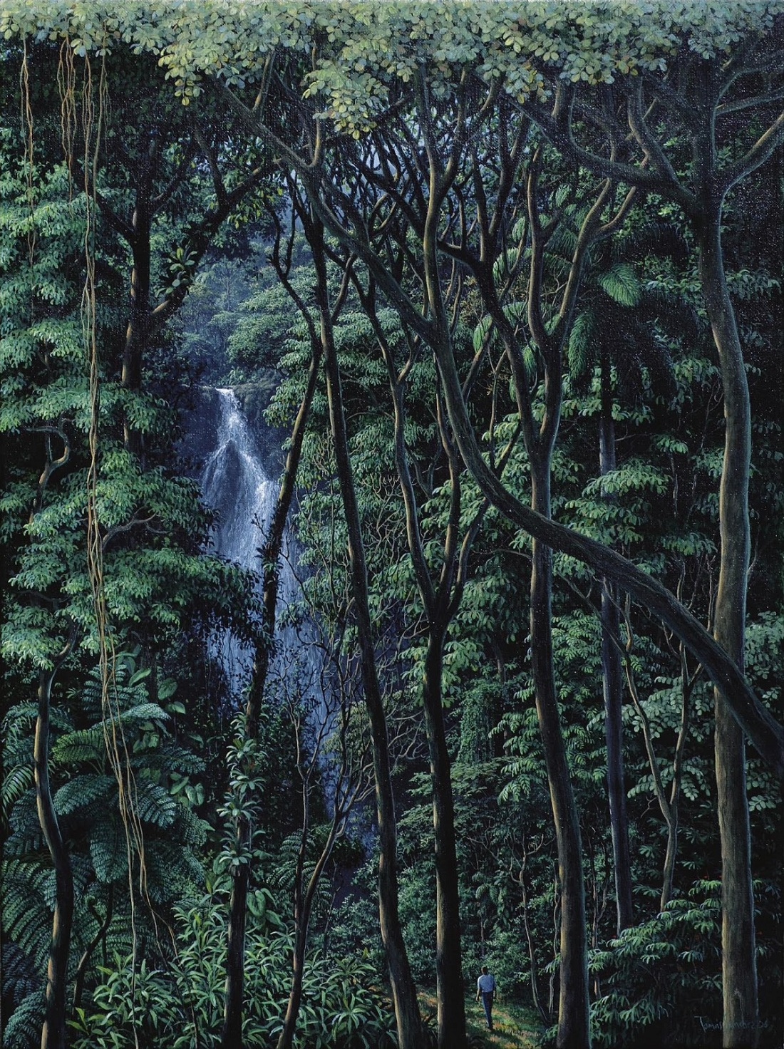Jungles and waterfalls. the best work of Thomas Sanchez 10