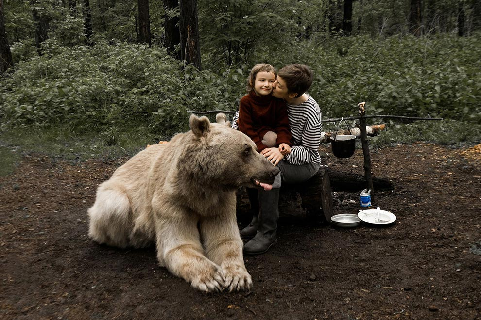 Like in a fairy tale. pictures of Russian family playing with a bear 06