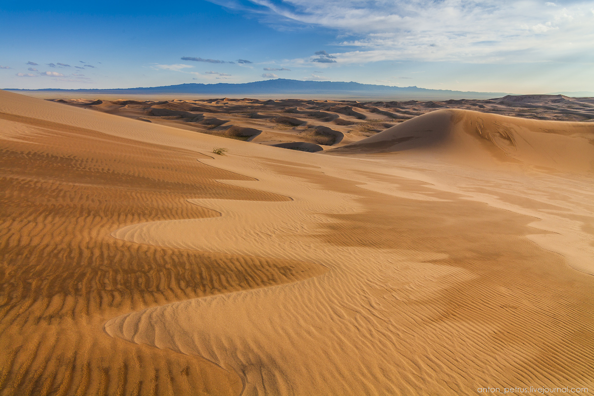 Singing Sands of the Gobi desert 08