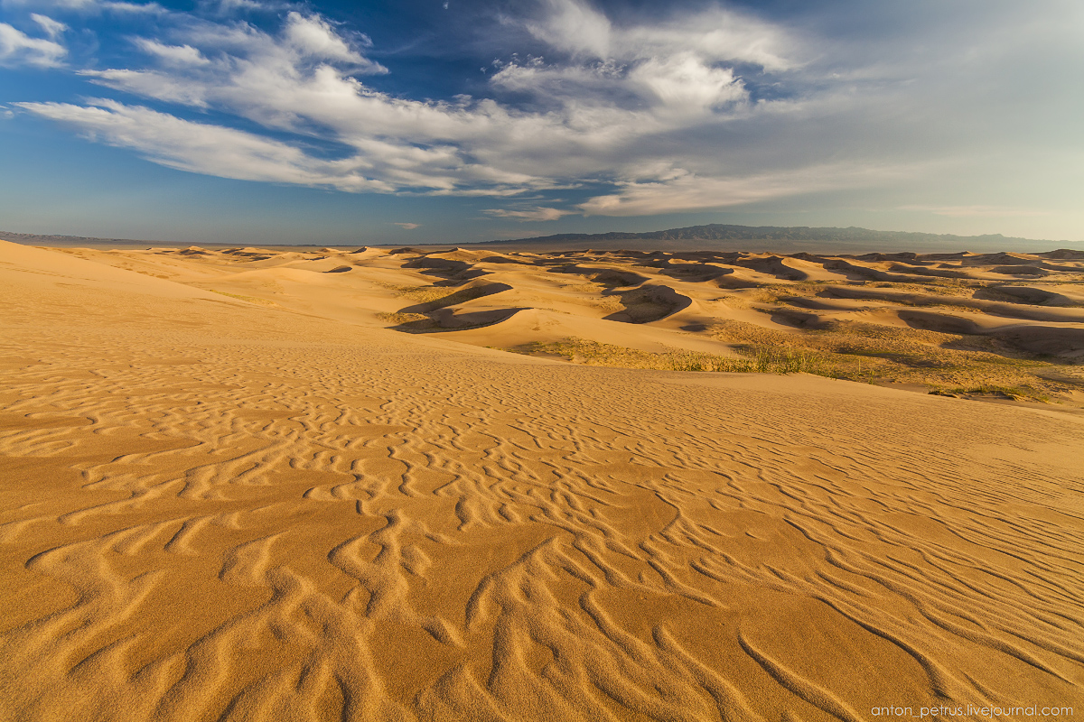 Singing Sands of the Gobi desert 12