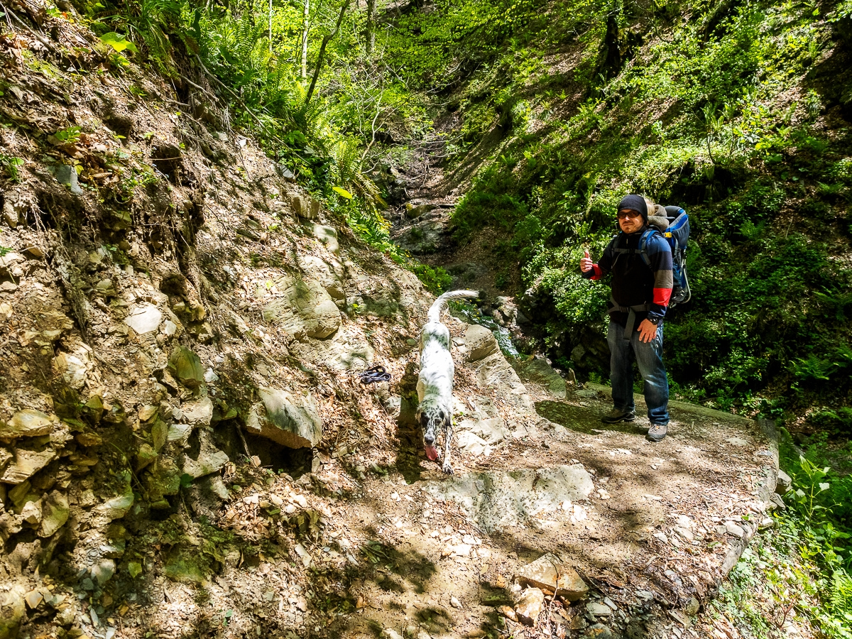 Walk through the forests of the Krasnaya Polyana 14