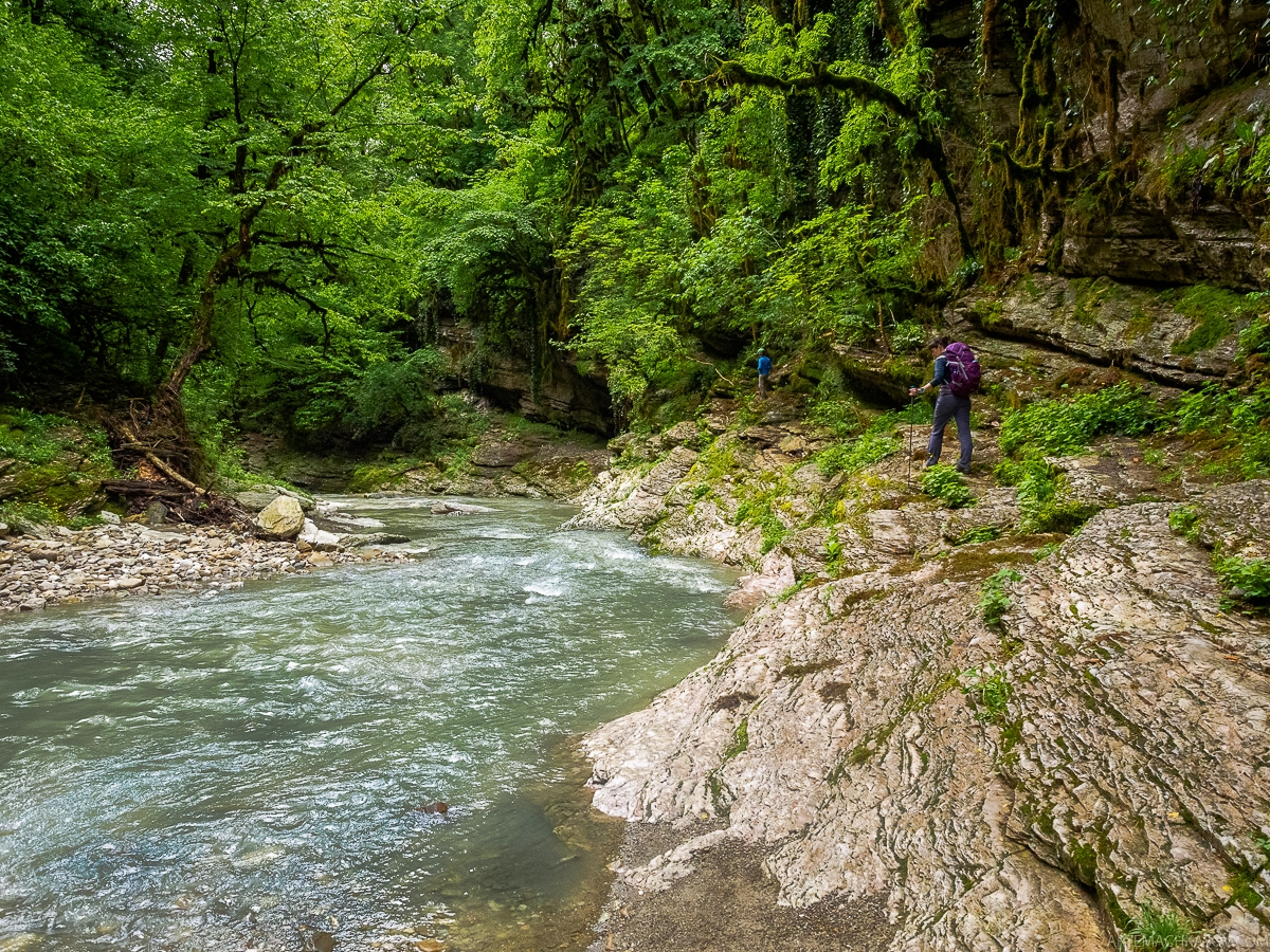 Walk through the forests of the Krasnaya Polyana 21