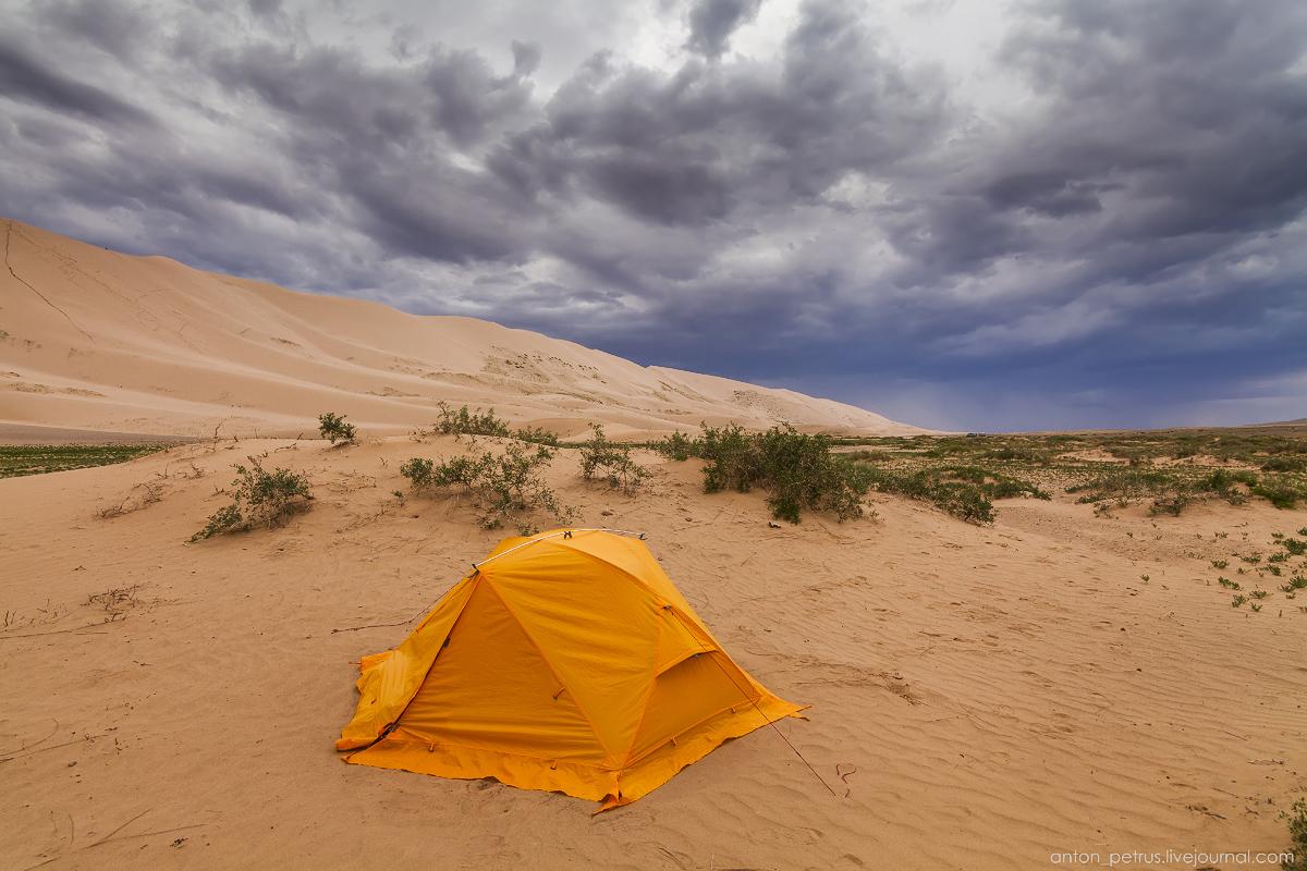 Desert storm 04