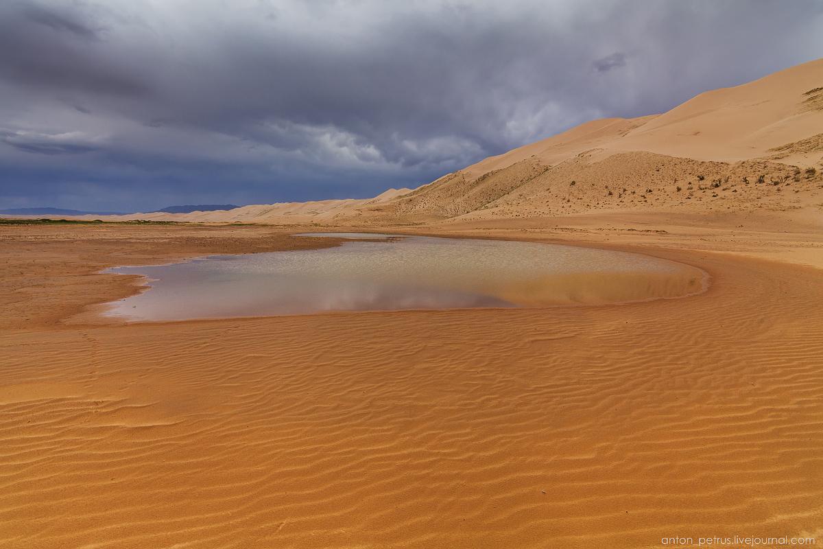 Desert storm 06