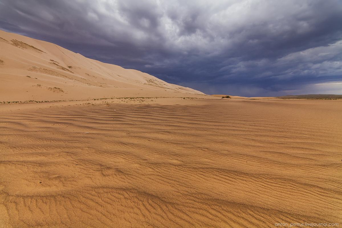 Desert storm 07