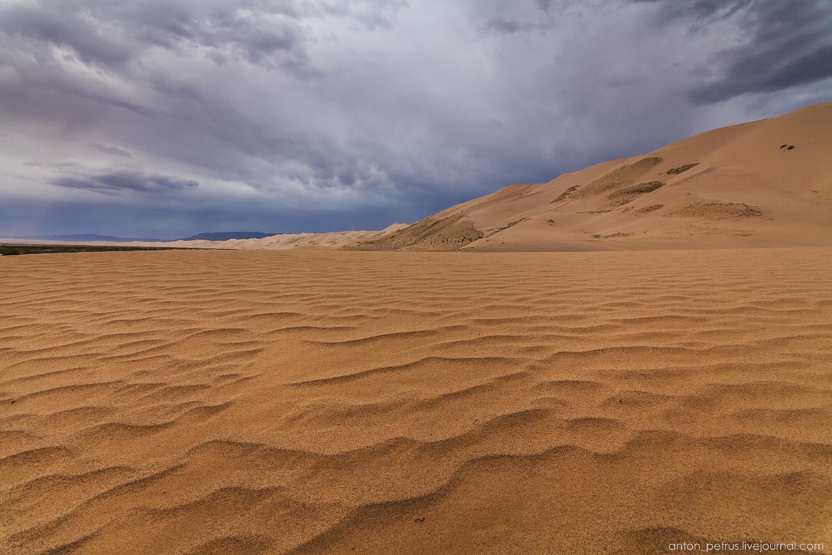 Desert storm 08