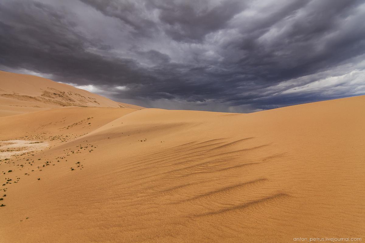 Desert storm 10