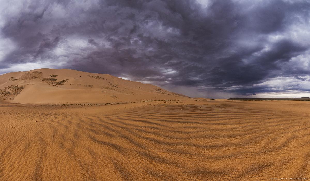 Desert storm 11