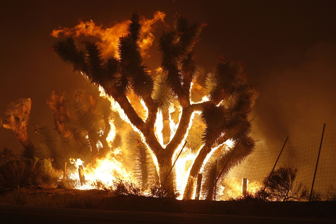 terrible-beauty-of-fire-in-california-01