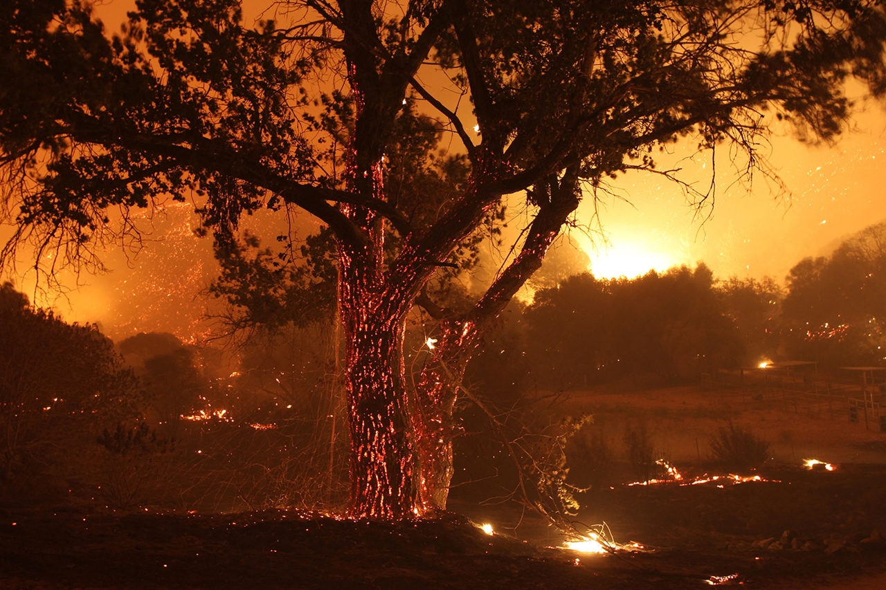 terrible-beauty-of-fire-in-california-13