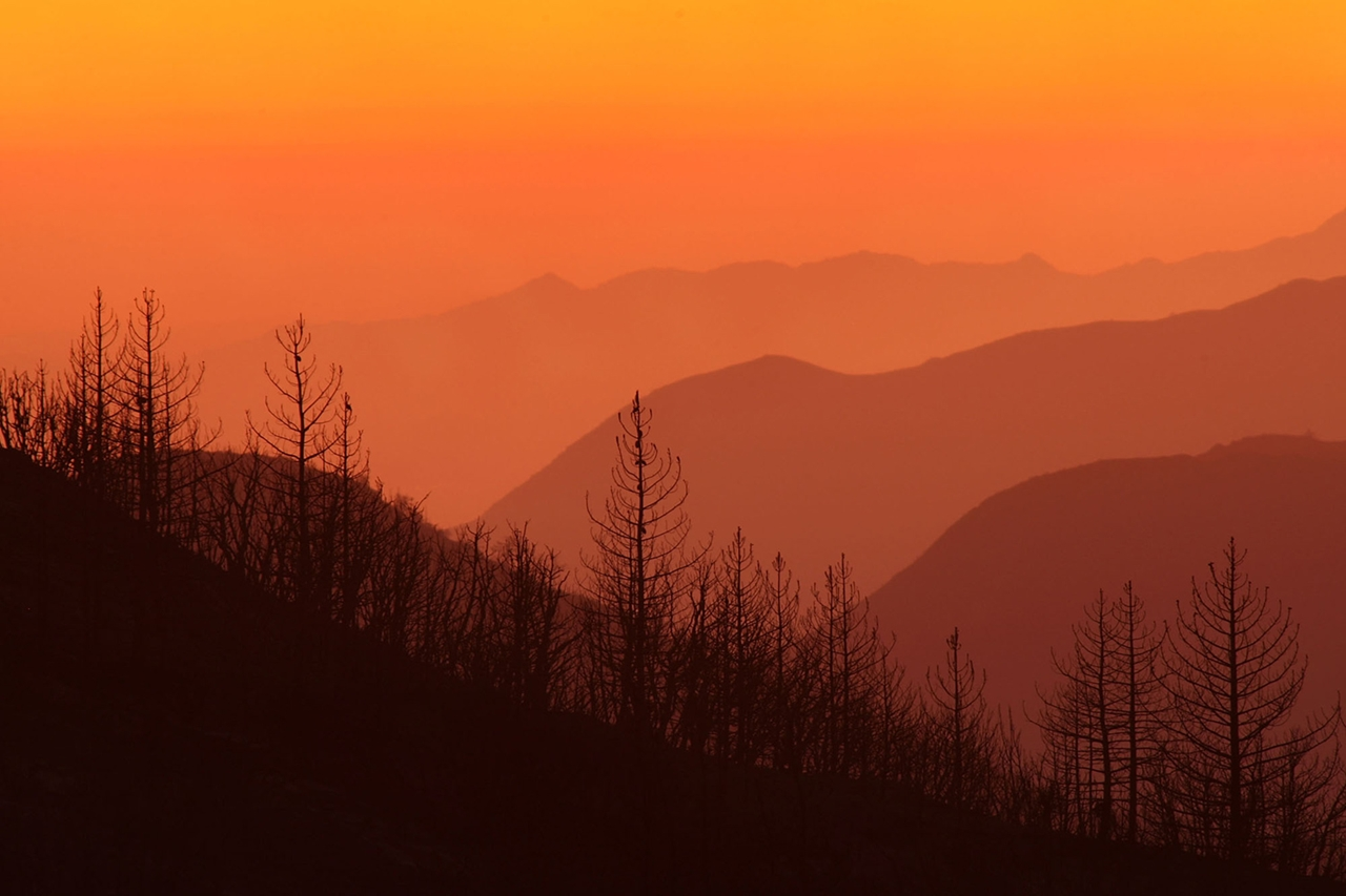 terrible-beauty-of-fire-in-california-15