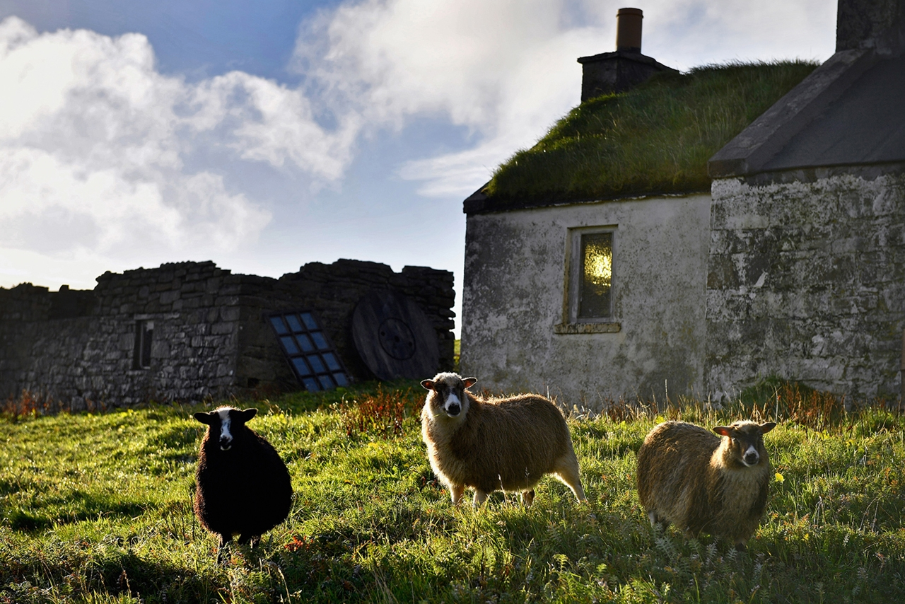foula-scotland-the-most-remote-inhabited-island-in-great-britain-10