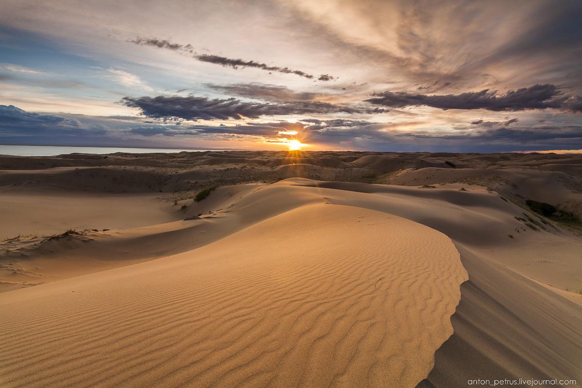 Пустыня Гоби. Следы на песке