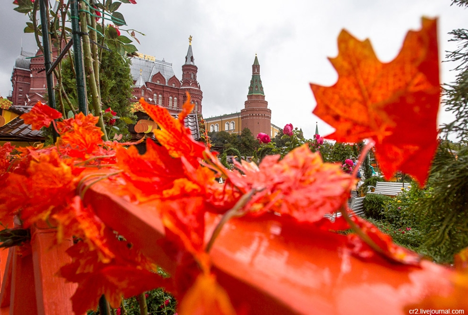the-festival-golden-autumn-in-moscow-04