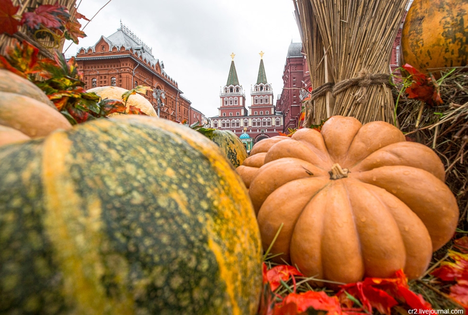 the-festival-golden-autumn-in-moscow-08