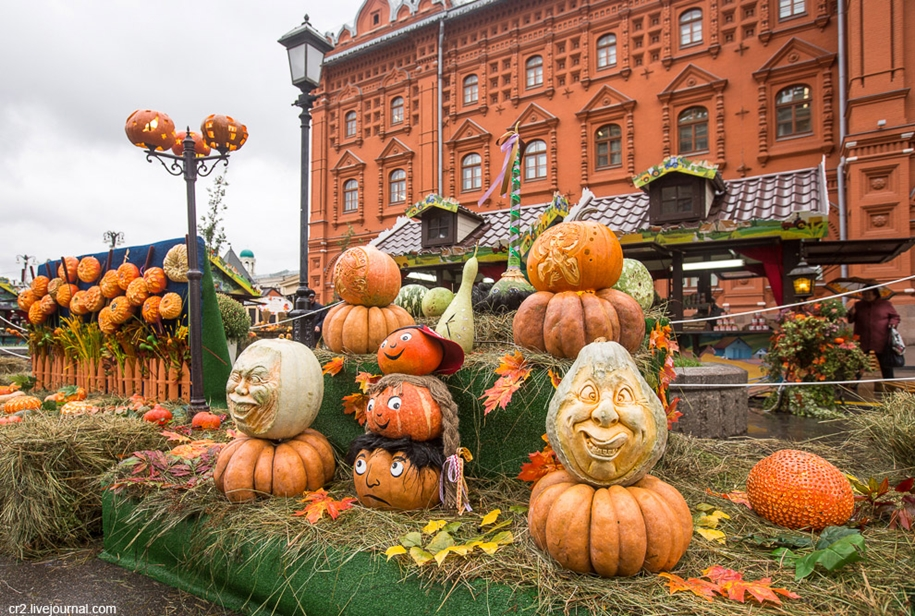 the-festival-golden-autumn-in-moscow-09