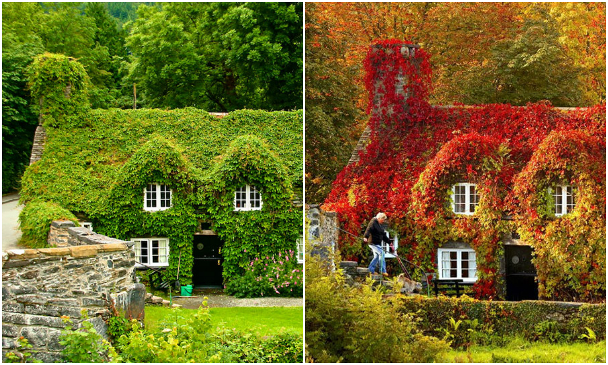 the-magic-of-autumn-before-and-after-00