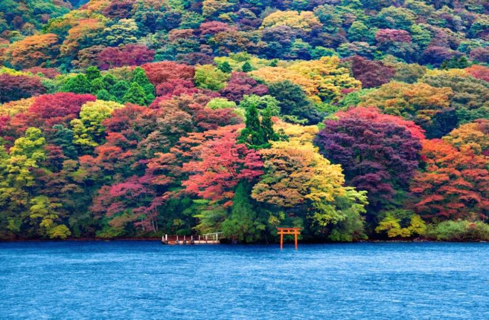 the-stunning-beauty-of-autumn-in-different-parts-of-the-world-10