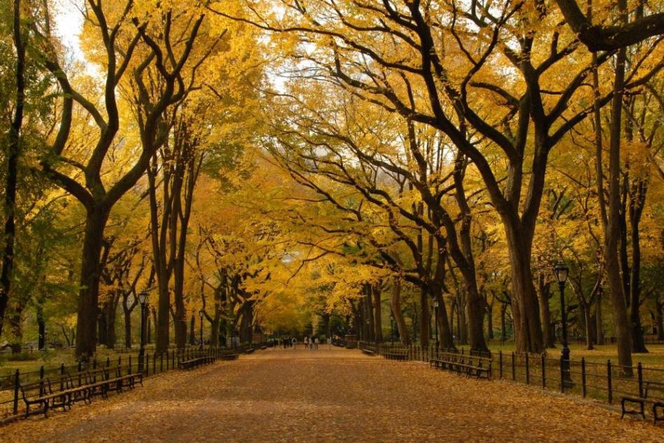 the-stunning-beauty-of-autumn-in-different-parts-of-the-world-12