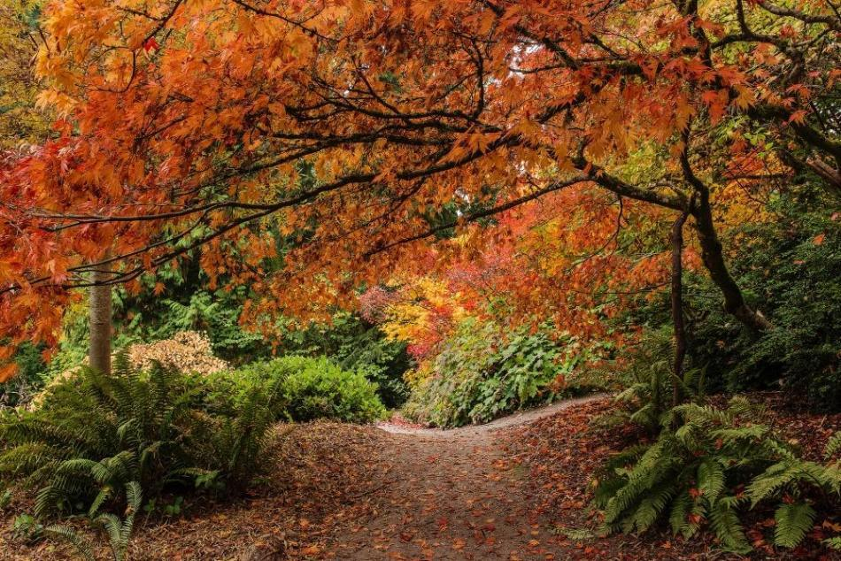 the-stunning-beauty-of-autumn-in-different-parts-of-the-world-16