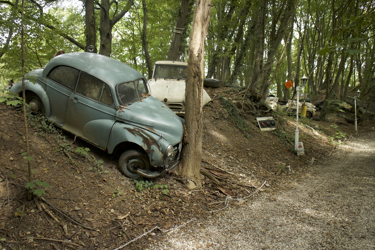 a-million-dollars-in-the-cemetery-in-the-woods-02