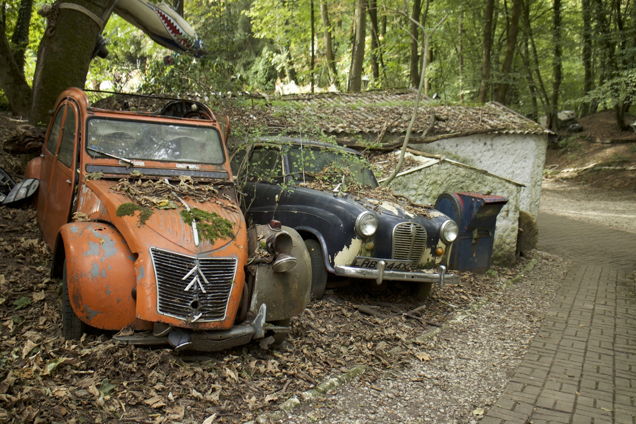 a-million-dollars-in-the-cemetery-in-the-woods-08