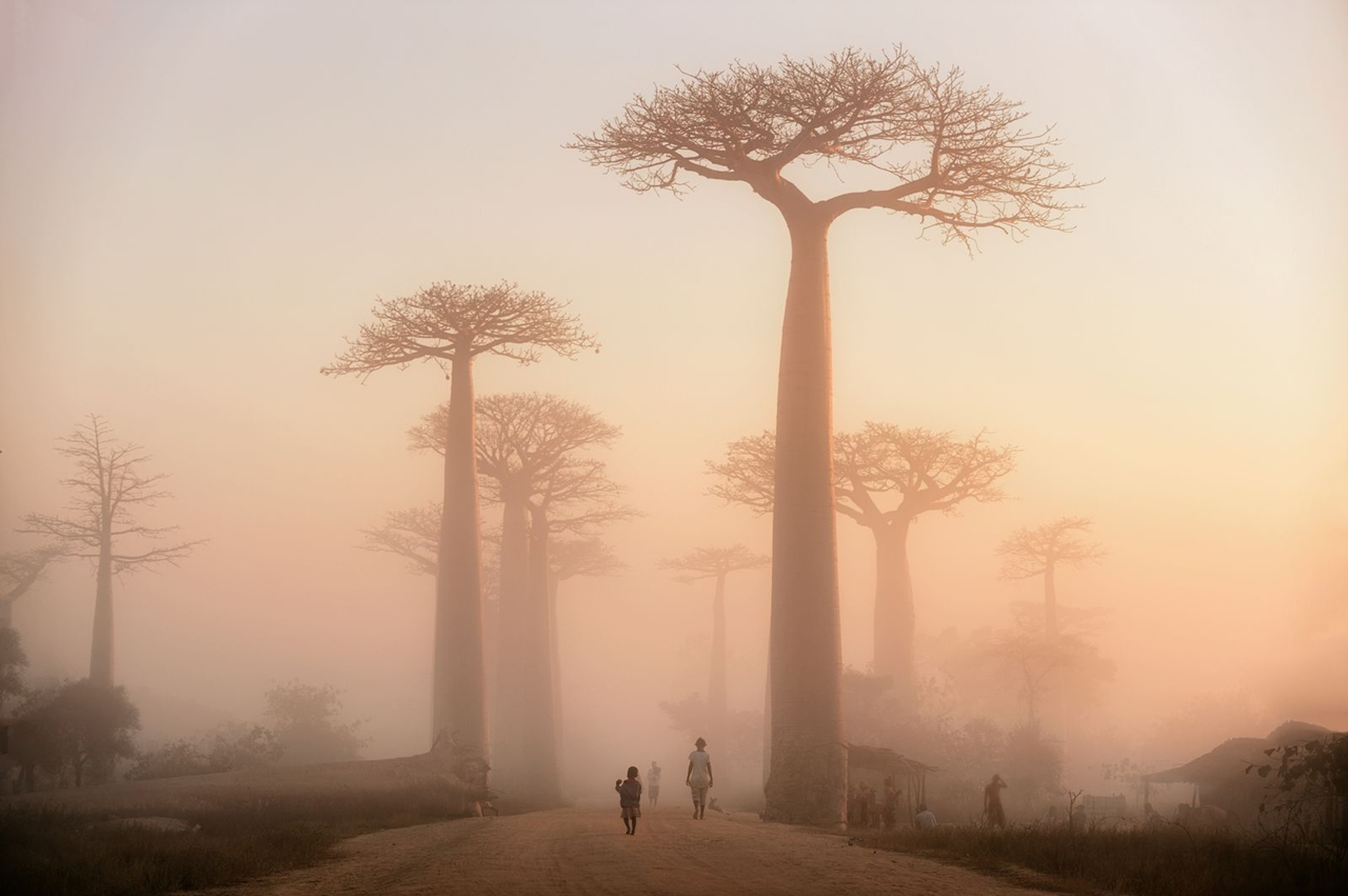 a-selection-of-the-best-photos-of-national-geographic-in-october-2016_05