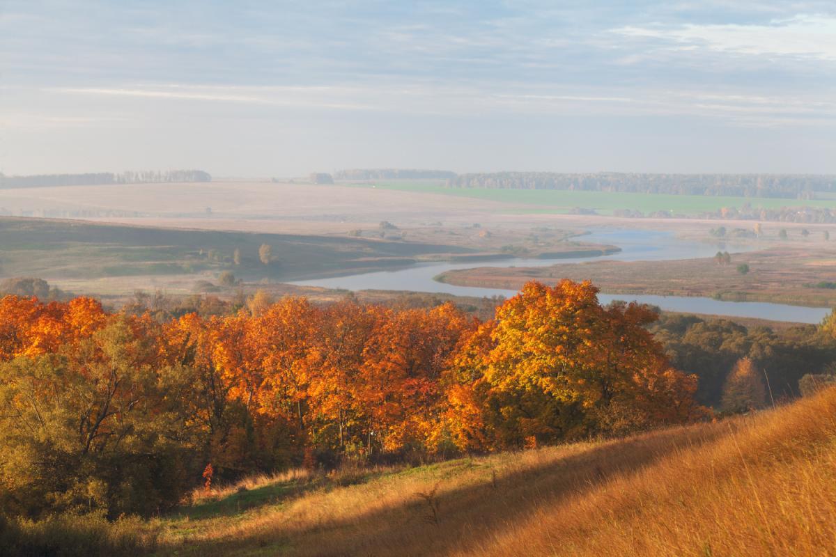 Осенние краски в пейзажах Рязанской области
