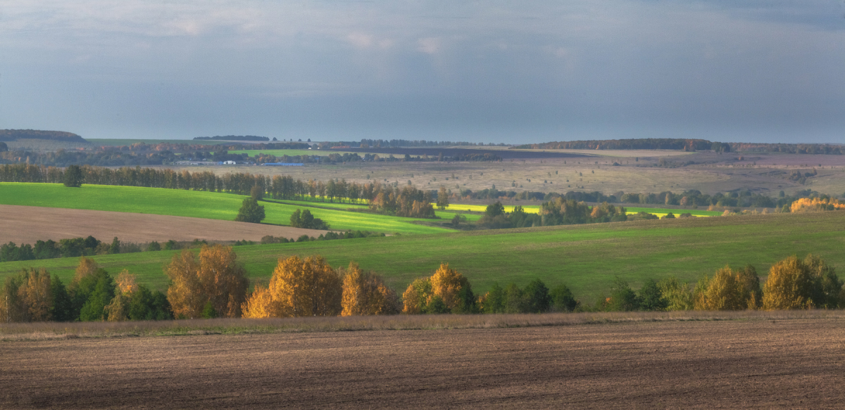 autumn-colours-in-the-scenery-of-the-ryazan-region-04