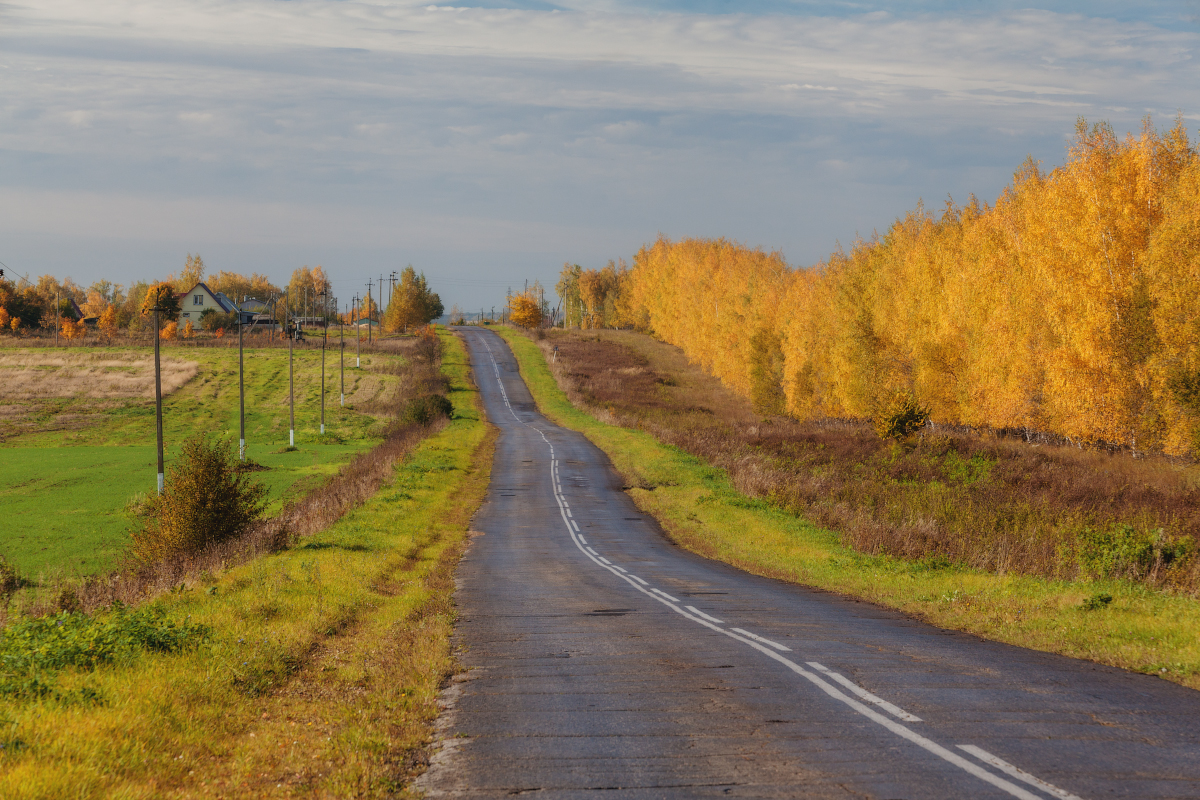 autumn-colours-in-the-scenery-of-the-ryazan-region-06