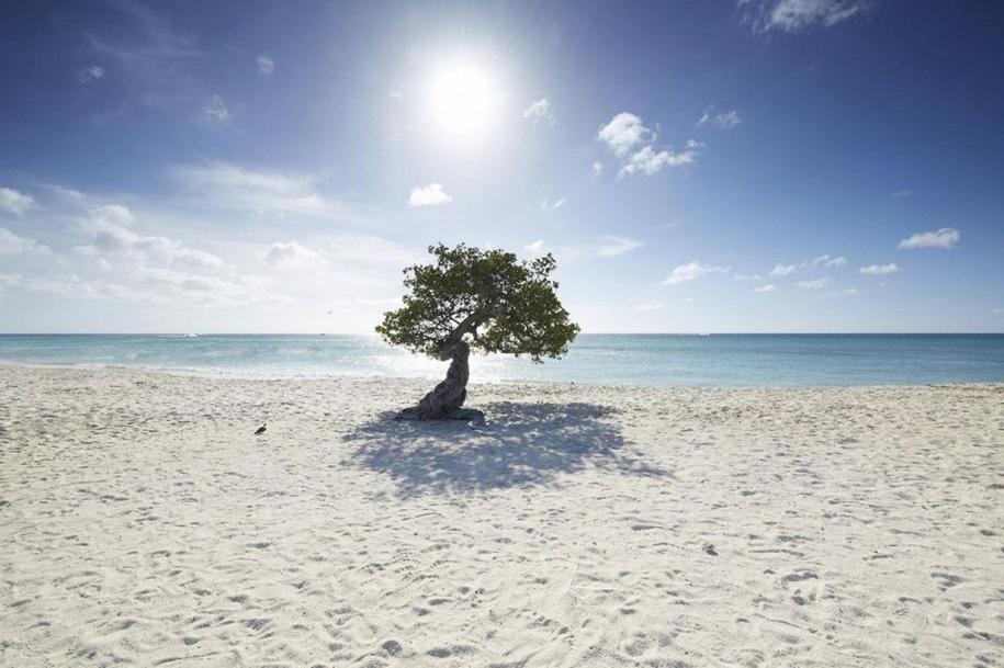 beautiful-beaches-of-the-caribbean-11