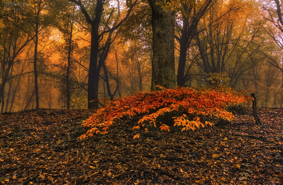 fall-of-crimea-in-the-lens-of-the-professional-landscape-photographers-09