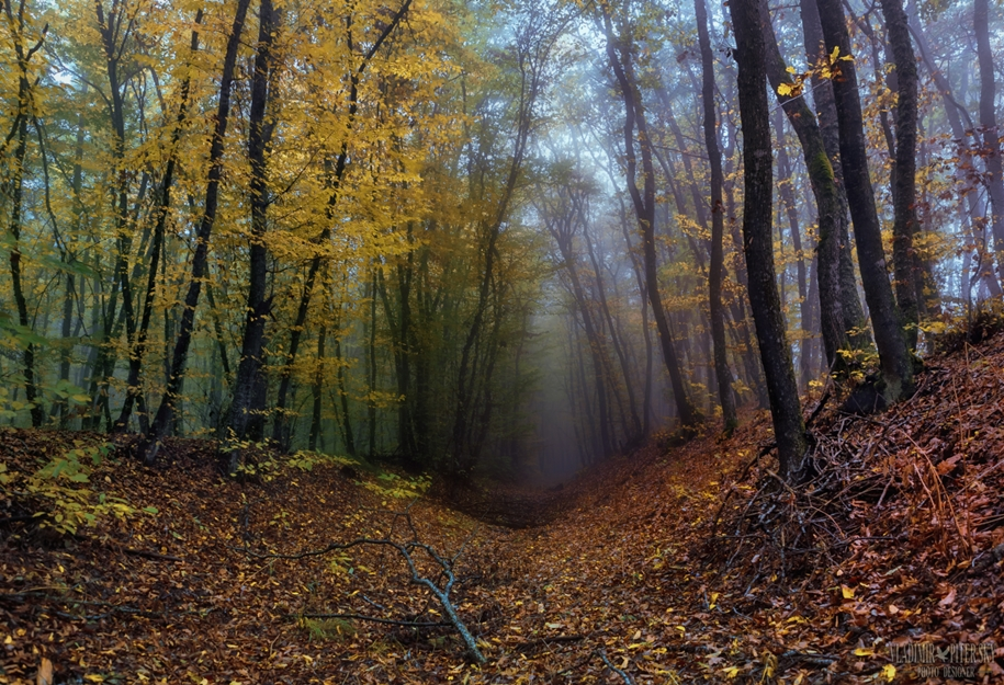 fall-of-crimea-in-the-lens-of-the-professional-landscape-photographers-10