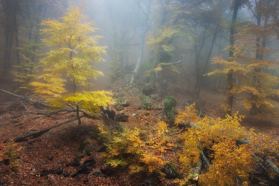 fall-of-crimea-in-the-lens-of-the-professional-landscape-photographers-13