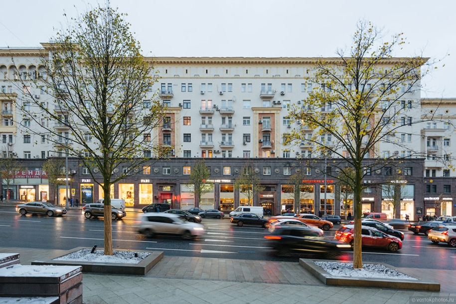 lime-avenue-on-tverskaya-37