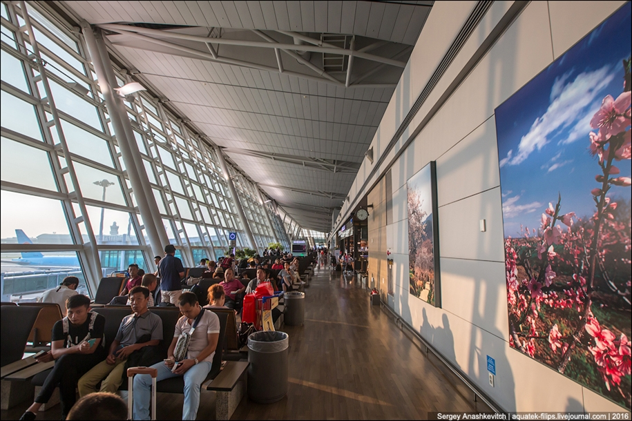 one-of-the-coolest-airports-in-the-world-16