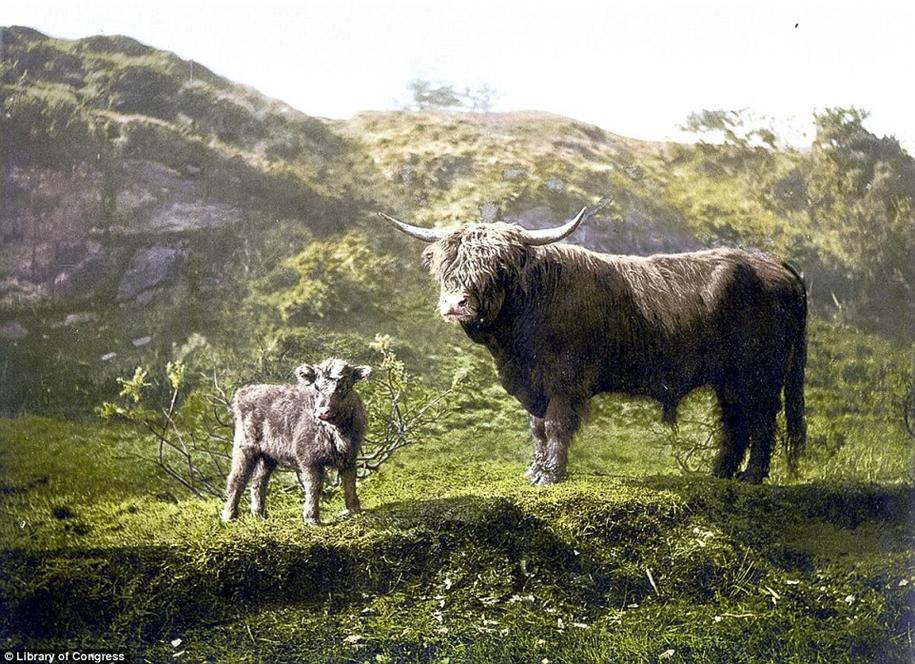 photochromic-scotland-in-the-victorian-era-13
