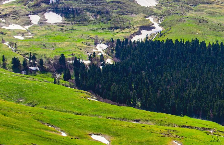 plateau-lago-naki-19