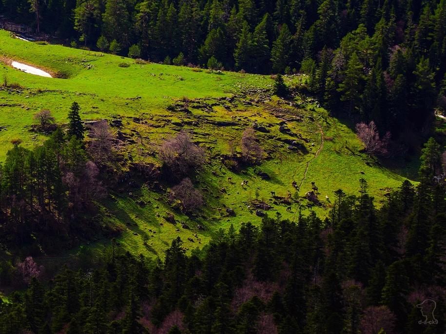plateau-lago-naki-21