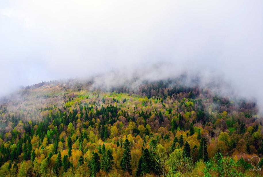 plateau-lago-naki-32