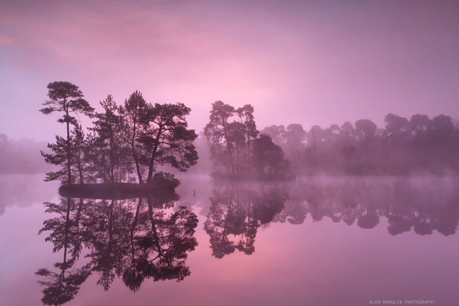 purple-mood-pictures-from-the-most-mysterious-color-20