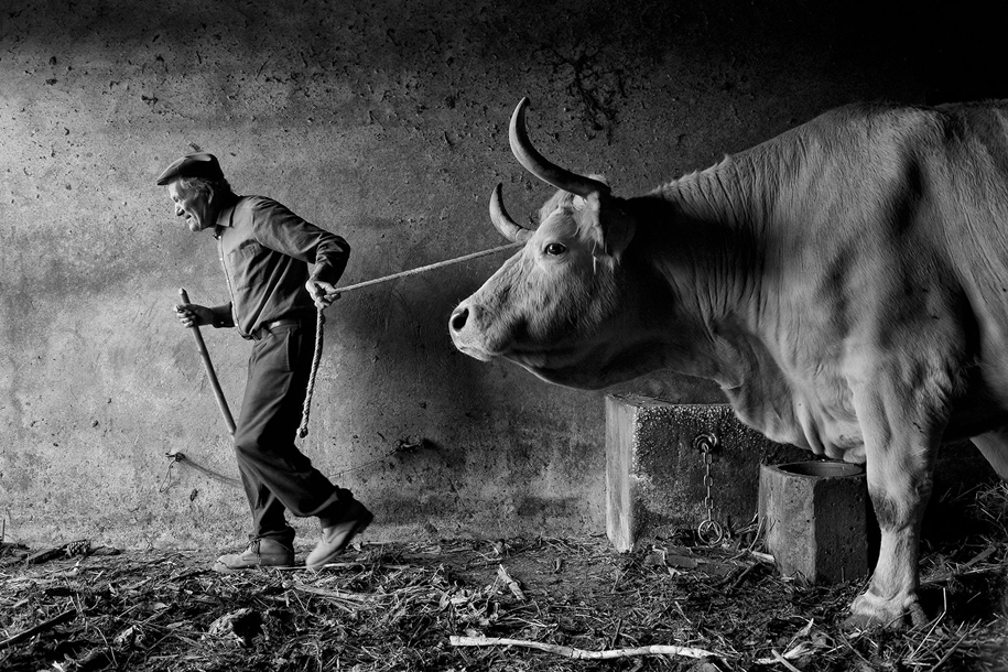 siena-international-photography-awards-winners-29