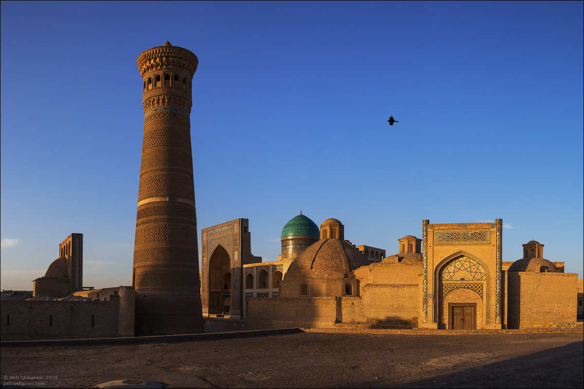 the-minaret-and-the-fortress-of-bukhara-03