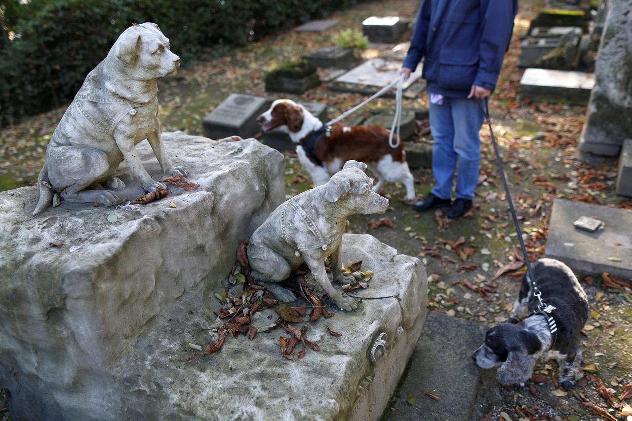 Кладбище для домашних животных в Париже