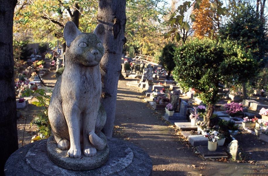 the-pet-cemetery-02