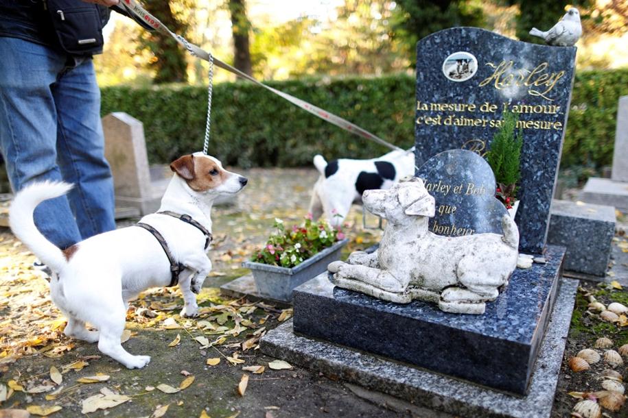 the-pet-cemetery-07