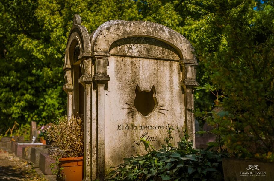 the-pet-cemetery-11